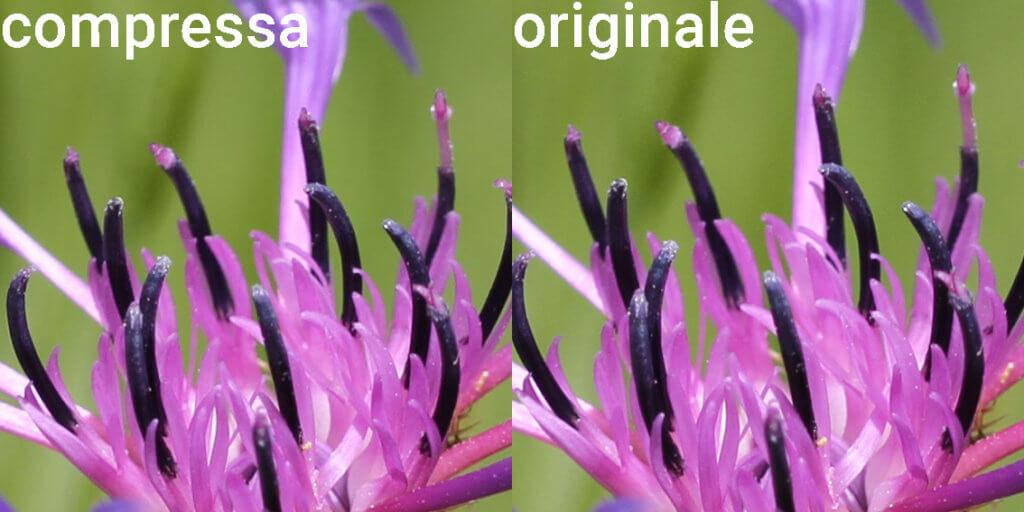 differenza tra foto originale e in alta qualità